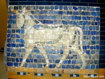 A photograph of a muralof a blue horse from one of Babylon's gates.